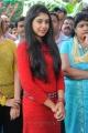 Actress Niti Taylor at Pelli Pustakam Movie Opening Photos