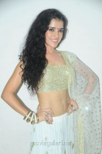 Actress Piaa Bajpai Spicy Hot Pics