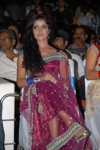 Actress Piaa Bajpai Hot Saree Photos at Dalam Audio Release