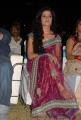 Telugu Actress Piaa Bajpai Hot in Saree Stills