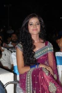 Actress Piaa Bajpai Hot Saree Photos at Dalam Audio Launch