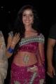 Actress Piaa Bajpai Hot Transparent Saree Photos