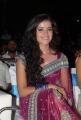 Actress Piaa Bajpai Hot Saree Photos at Dhalam Audio Release