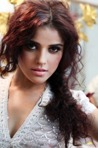 Actress Piaa Bajpai Portfolio Hot Photo Shoot Images