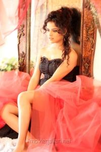 Actress Piaa Bajpai Hot Portfolio Images