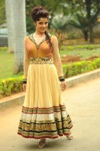 Telugu Actress Piya Bajpai Hot Pics