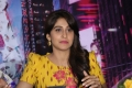 Regina @ Pochampally goes to New York - A Press Meet by Shilpa Reddy
