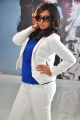 Tamil Actress Spoorthi in Pokkiri Mannan Movie Photos
