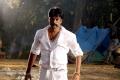 Pokkiri Mannan Tamil Movie Stills