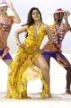 Tanisha Mukherjee Hot Pics @  Pokkiri Paiya Movie Stills