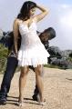 Jr NTR Tanisha Mukherjee Hot Pics @  Pokkiri Paiya Movie Stills