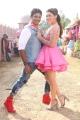 Jiiva, Hansika Motwani in Pokkiri Raja Telugu Movie Stills