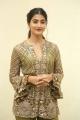 Actress Pooja Hegde New Photos @ Aravindha Sametha Success Meet
