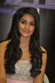 Pooja Hegde in Mugamoodi Movie Launch