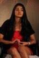 Pooja Hegde New Hot Stills