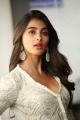 Saakshyam Actress Pooja Hegde New Stills