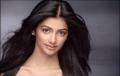 Pooja Hegde Hot Photo Shoot Gallery