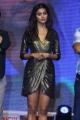 Telugu Actress Pooja Hegde Photos @ DJ Thank You Meet