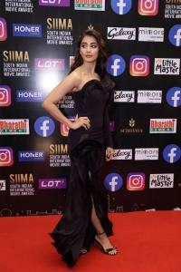 Actress Pooja Hegde Pictures @ SIIMA Awards 2021 Red Carpet