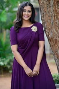 Bangaru Bullodu Heroine Pooja Jhaveri Images in Violet Dress