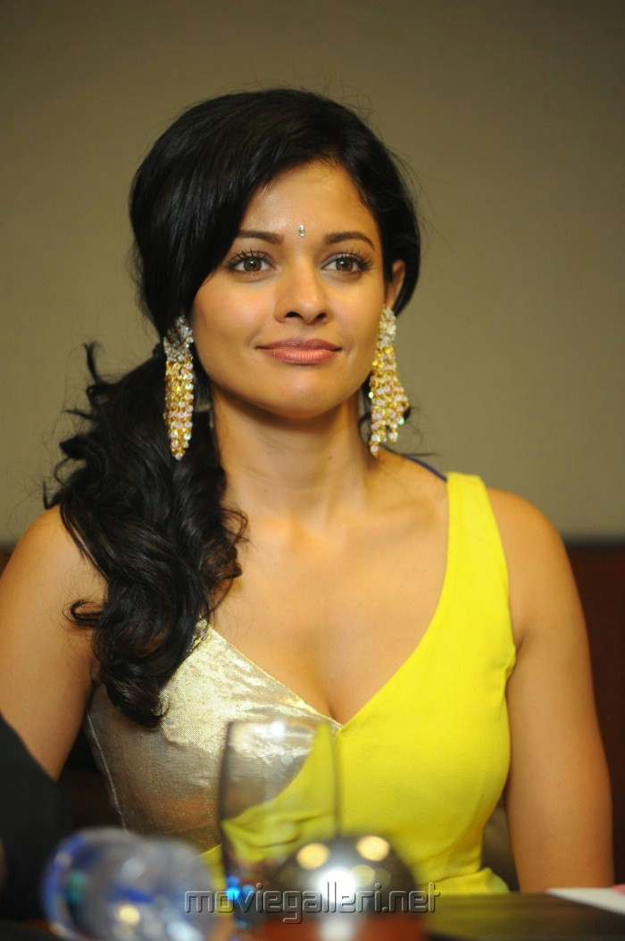 Actress Pooja Kumar Hot Stills at Viswaroopam DTH Launch