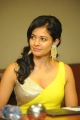 Pooja Kumar posing in Hot Yellow Dress at Vishwaroopam Press Meet