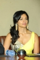 Actress Pooja Kumar Latest Hot Stills at Vishwaroopam DTH Launch