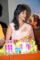 Actress Pooja Kumar in Saree at Vishwaroopam Audio Release Function