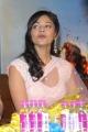 Actress Pooja Kumar Stills in Saree at Vishwaroopam Audio Launch