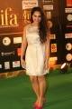 Pooja Ramachandran Hot Pics @ IIFA Utsavam Awards 2016
