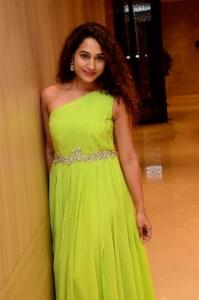 Actress Pooja Ramachandran New Stills @ Power Play Pre-Release