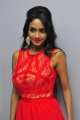 Actress Pooja Sree Pics in Red Dress @ Saiya Re Album Launch