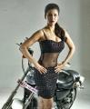 Actress Shruti Hassan Hot in Pooja Telugu Movie Photos