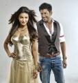 Hot Shruti Hassan, Vishal in Pooja Telugu Movie Photos