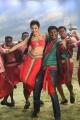 Shruti Hassan, Vishal in Poojai Movie Hot Song Stills
