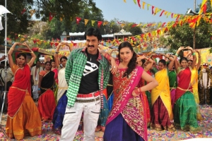 Sunil Isha Chawla @ Poola Rangadu Movie Stills
