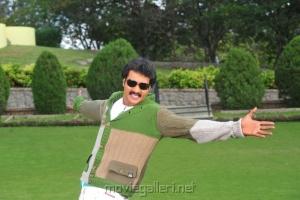Poola Rangadu Sunil Telugu Movie Stills