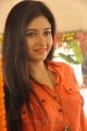 Poonam Bajwa New Images at H Production Movie Opening
