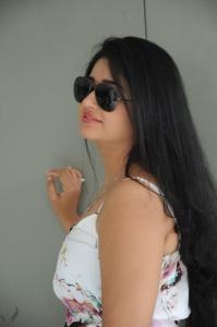 Latest Poonam Bajwa Hot Stills @ GAMA 2013 Press Meet
