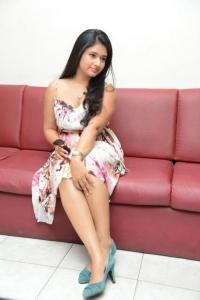 Poonam Bajwa @ Gulf Andhra Music Awards (GAMA) 2013 Press Meet