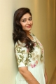 Actress Poonam Bajwa HD Photos @ Sutraa Lifestyle Fashion Dussehra Exhibition Launch