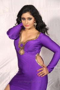 Actress Poonam Bajwa Hot Images in Aranmanai 2 Movie
