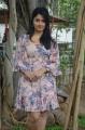 Romeo Juliet Movie Actress Poonam Bajwa Stills