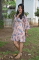 Actress Poonam Bajwa Hot Stills @ Romeo Juliet Press Meet