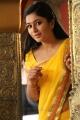 Actress Poonam Bajwa Yellow Saree Photos in Kalavathi Movie