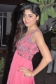 Poonam Kaur Hot Photos in Light Pink Long Dress