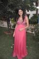 Actress Poonam Kaur New Hot Photos