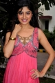 Actress Poonam Kaur Hot Photos at Guest Audio Launch