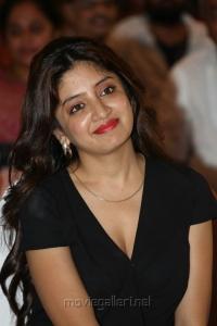 Actress Poonam Kaur Hot Pics in Black Dress