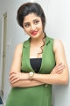 Telugu Heroine Poonam Kaur in Green Dress Hot Pics